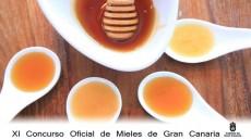 XI Concurso de mieles - Cabildo de Gran Canaria