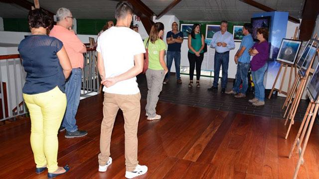 Exposición tiburón Angelote El Muelle