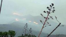 Incendio forestal Tasarte