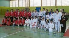 Open de artes marciales