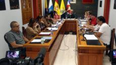 Pleno presupuesto 2020